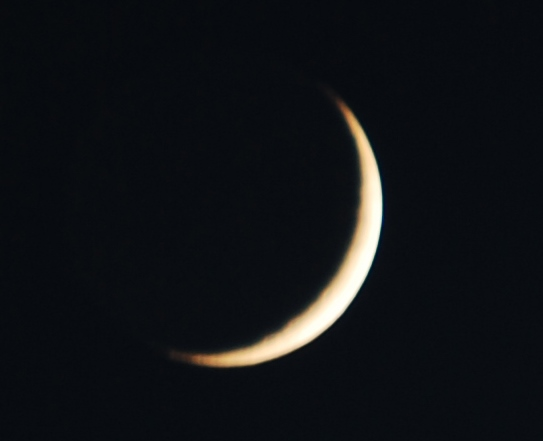 New Moon Star Planners Astrology