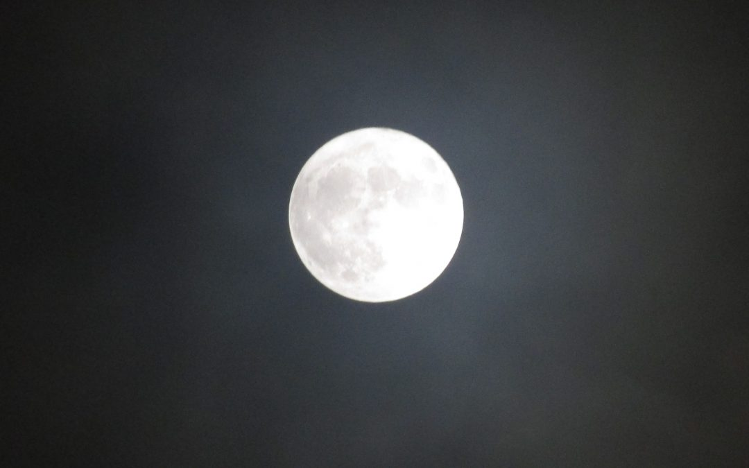 Bright Full Moon Star Planners Astrology