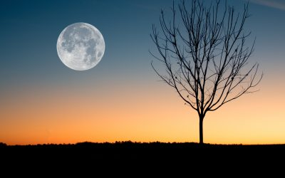 The Full Super Moon arrives in Libra